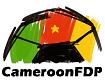 Ascender Incubator CameroonFDP